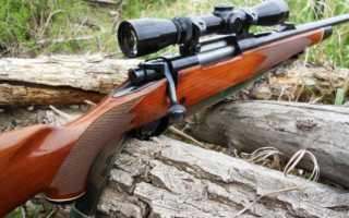 Мелкокалиберная винтовка: характеристики, обзор, калибр, выбор для охоты