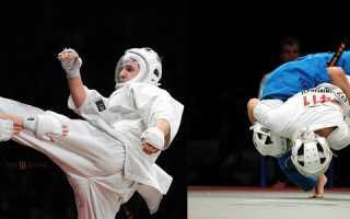 Что такое кудо: kudo, кудо России официальный сайт, спарринг, пояса, фото, дети, экипировка, правила, соревнования, кимоно