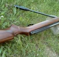 Как выбрать пневматическую винтовку для охоты: мощность, калибр (5.5, 9мм), тип, цена, видео