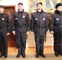 Форма мвд: 575 приказ, правила ношения, обмундирование полиции россии нового образца, парадная, зимняя, летняя