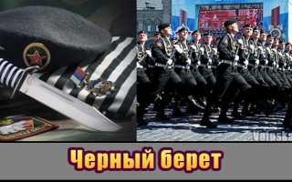 Морская пехота ВМФ РФ, форма, флаг и береты, бригады, дивизии, корпуса, полки и взводы, части спецназа