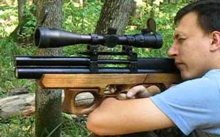 Обзор пневматической винтовки PCP Раптор-3 Коротыш: характеристики, апгрейд, устройство, видео