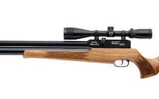 Обзор пневматической винтовки Evanix Blizzard S10: технические характеристики, устройство, апгрейд, фото и видео