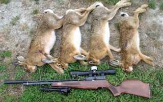 Охота с пневматикой: охотничья воздушка, пневматические пули в России, пистолет Хатсан 125 на тетерева и рябчика, дроздов и уток