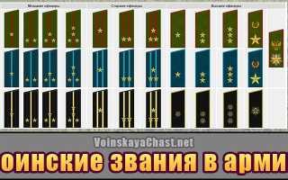 Воинские звания по возрастанию в армии России: знаки различия, звезды на погонах
