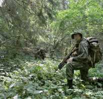 Спецназ ВДВ, полки и бригады, про русских разведчиков, вся история от создания до наших дней, участие в боевых операциях, подготовка