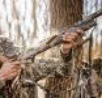 Где купить ружьё бу: объявления, оружейный форум, закон об оружии