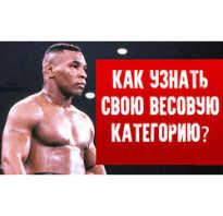 Весовые категории в профессиональном и любительском боксе