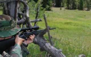 Как правильно пристрелять оптический прицел на пневматической винтовке: выбор мишени, дистанции и оптимальных настроек