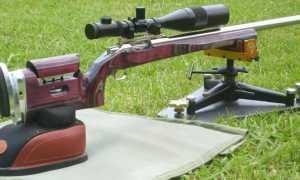 Как пристрелять пневматическую винтовку (Hatsan 125, МР-512) с оптикой, без оптики, с лазерным лучом