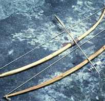 Стрельба из лука: спортивного, охотничьего, блочного, детского и традиционного, какая мощность, стрелы и тетива, как ухаживать за оружием, особенности эксплуатации