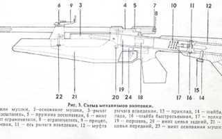Обзор пневматической винтовки ИЖ 60