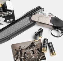 Обзор пневматической винтовки Хатсан Оптима Сильвер Синтетик