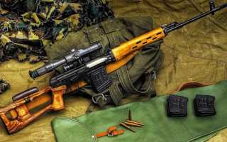 Прицел на успех: в чем феномен легендарной винтовки Драгунова