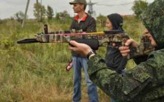 Рекурсивный арбалет Фокс (Fox) от Bowmaster: отзывы, правила стрельбы