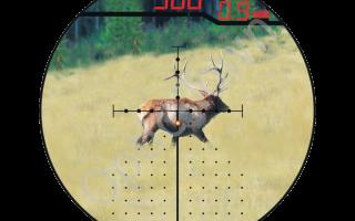 Оптический прицел с дальномером (лазерный): обзор Burris Eliminator и Nikon Monarch, принцип работы, цена