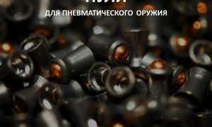 Обзор пуль для пневматического оружия