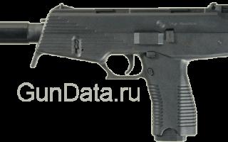 Пистолет Штайр СПП (Steyr SPP, Special Purpose Pistol)