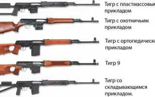 Карабин Тигр: охотничье нарезное оружие, какие приклад, магазин, ствол и оптика, патроны калибра 7,62х54, 3х64 и 9,3х64