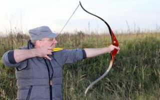 Какие луки бывают, и как их правильно выбрать: для охоты, для стрельбы, для начинающих