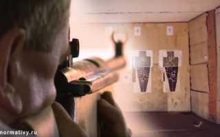 Стрельба ГТО из пневматической винтовки