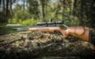 Как правильно целиться и стрелять из пневматической винтовки