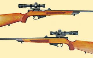 ТОЗ 99, ТТХ самозарядного карабина, стрельба из мелкашки, калибр винтовки, ствол, магазин и цевье, модификация Люкс